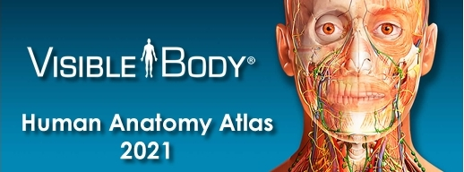 Visible Body Human Anatomy Atlas